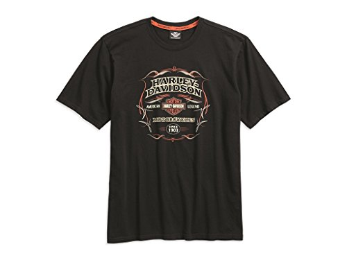 harley-davidson-t-shirt-pinstripe-flames-m