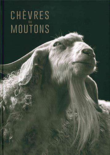 Chèvres ou moutons par Kevin Horan