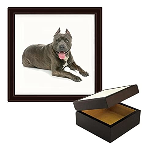 American Staffordshire Terrier Image Wooden Jewellery Trinket Box