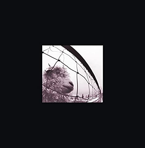 Vs. & Vitalogy 3 CD Deluxe Edition