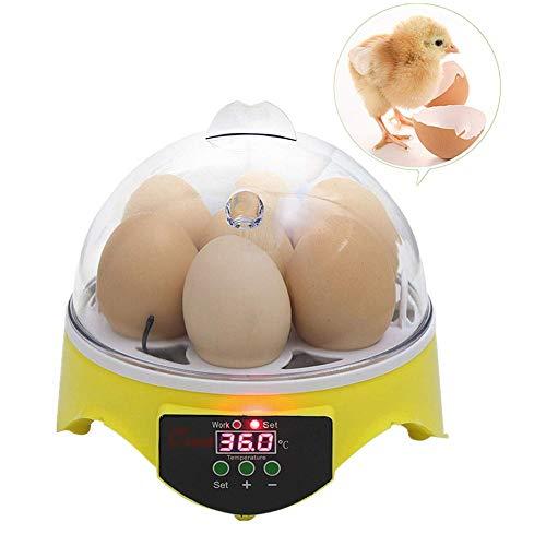 ZFF 7 Uova Incubatrice Semi Automatico Mini Digitale Broode Temperatura Controllo Pollame Hatcher per Cova Pollo Oca Anatra