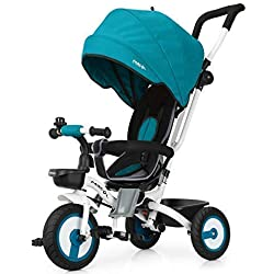 Fascol Triciclo Bebé Plegable 4 en 1 Trike Bicicleta para Niños de 6 Meses a 5 Años Máx 30 kg (Azul)