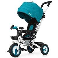 Fascol Triciclo Bebé Plegable 4 en 1 Trike Bicicleta para Niños de 6 Meses a 5