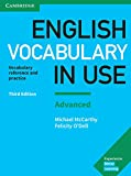 English Vocabulary in Use Advanced 3rd Edition: Book with answers