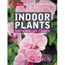 Collins Practical Gardener - Indoor Plants by Lia Leendertz (2004-04-05)