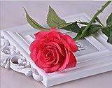 Jun7L 10 Stücke Künstliche Rosen Silk Blumen Gefälschte Flowers Braut Hochzeit Bouquet Für Hausgarten Geburtstag Party Home Wedding Dekor - Rosenrot 45x6.5cm