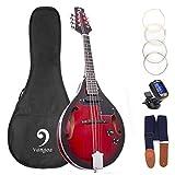Mandoline Instrument Red Sunburst Mahagoni Akustisches elektrisches Mandoline im...