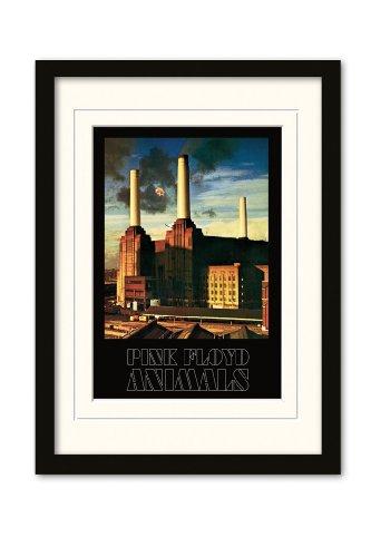 "Pyramid International - Poster con cornice montata ""Pink Floyd - Animals"", 30x42 cm"