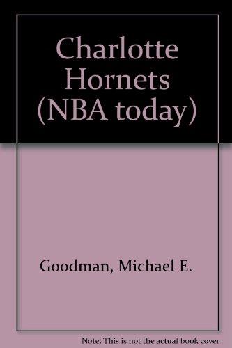 Charlotte Hornets (NBA today) por Michael E. Goodman