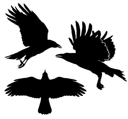 decalstore 3X Vogelschutz Aufkleber Fenster/Wintergarten / Scheiben -