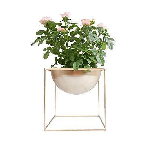 Faturt personalità flower pot metallo creativo ferro battuto flower pot acqua impiantistica rotonda in ferro battuto non poroso flower pot fiore stand tempo libero spazio
