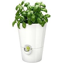 Suchergebnis Auf Amazon.de Für: Blumentopf Wasserspeicher Blumentopfe Mit Wasserspeicher