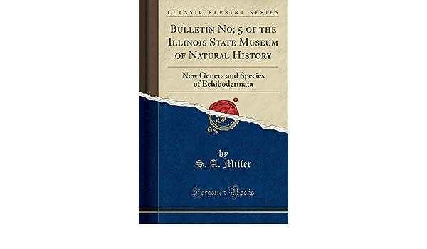 Illinois state museum american bottom