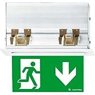 Zumtobel lumière LED lampe de sauvetage caractères Art Sign # 42180553C ED NSI RZ Lampe de sécurité 1U 4024318955131