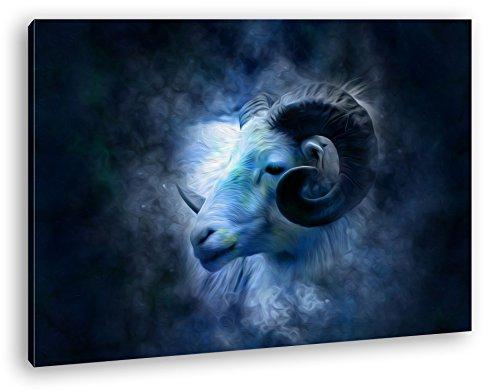 Bezaubernder Widderkopf Effekt: Zeichnung im Format: 80x60 als Leinwandbild, Motiv fertig gerahmt auf Echtholzrahmen, Hochwertiger Digitaldruck mit...