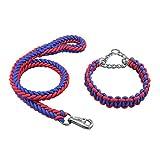 JIANXIN Hundeleine, Halsband-Hundeleine, Drei Farben Und Größen, Geeignet Für Mittlere Und Große Hunde (Farbe : A, größe : L 2 * 120cm)