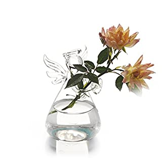 Chakil Florero de Vidrio Florero Transparente Colgante Decoración Hogar Mesa Oficina Sala Decoración Flores Plantas