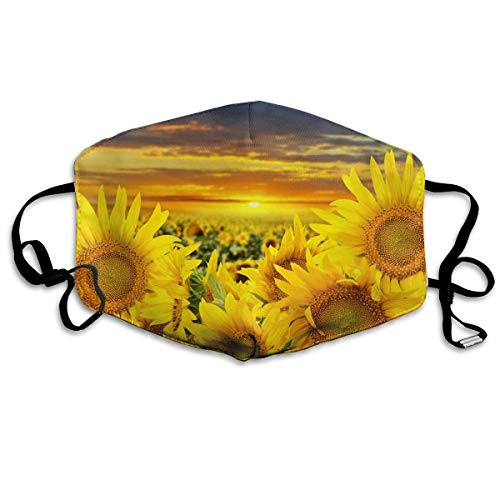 WBinHua Masken für Erwachsene, Mask Face, Mouth Mask, Breathable Mask Anti Dust, Unisex Sunflower Field Printed Cotton Mouth-Masks Face Mask Polyester Anti-dust ()