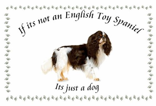 English Toy Spaniel – Novelty Dog keyrings – If its not