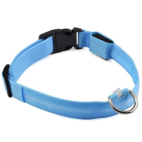 DIGIFLEX Flashing Dog Collar LED Blue Dog Pet Safety Collar Tag Adjustable Medium