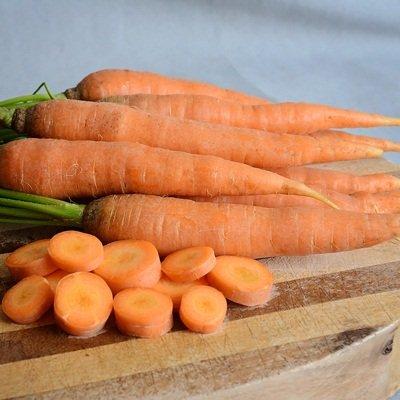 1 Gramm Samen von Bolero Karotten