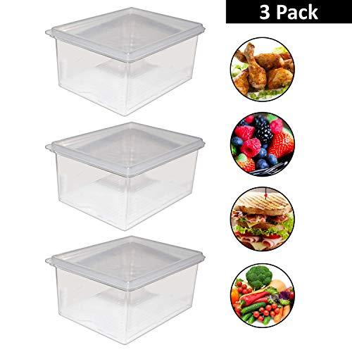 Kurtzy Frischhaltedosen (3 Pack) - 1500ml Acryl Plastik Vorratsbehälter mit Abtropfgitter für Fleisch, Gewürze, Gemüse, Obst, Schrank Lagerung