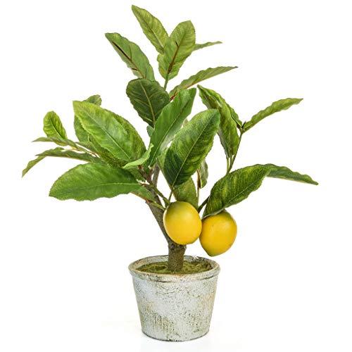 Treelocate Künstlicher Zitronenbaum, 40 cm, Gelb mit grünen Blättern