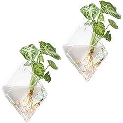 Mkouo 2 Stück Glas zum Aufhängen Wand Vase Flower Pflanztopf Behälter Wasser Pflanzkübel Home Office Dekoration – Diamant …