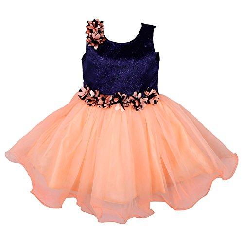 Wish Karo Party wear Baby Girls Frock Dress DN1005 fr1005-2-3 Years