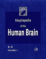 Encyclopedia of the Human Brain