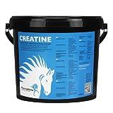 PharmaHorse Creatin Muscle Build Pferd 3000 gr.