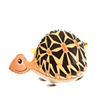 Turtle Animal Walking Balloon Party Foil Balloons