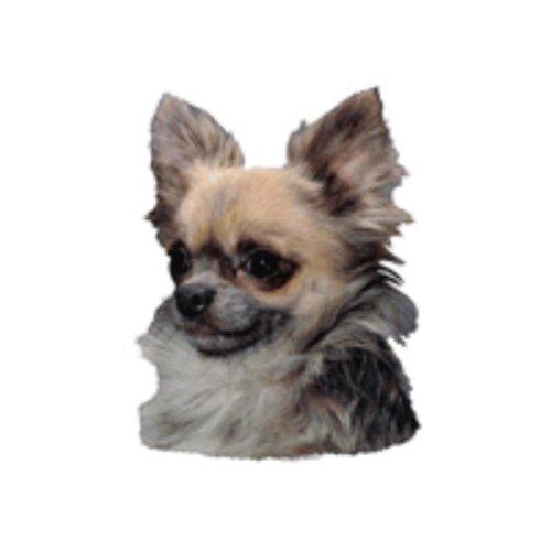 World Stickers Schwandt Heimtierbedarf 13032 Aufkleber 2 Stück ca. 140 x 160 mm für Warnschild Chihuahua