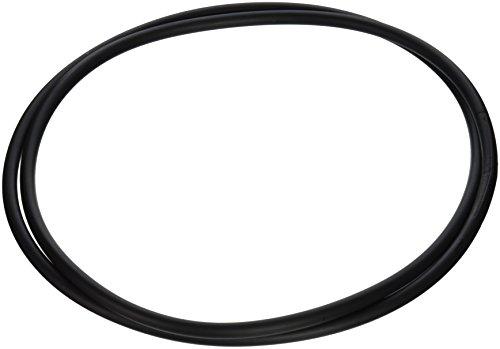 Pentair 24750-0005 Ersatzfilter für Pool und Spa mit O-Ring, 50,8 cm - Pentair-pool-pool-filter
