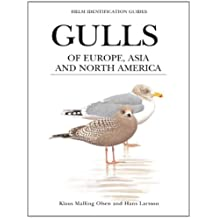 Gulls of Europe, Asia and North America (Helm Identification Guides) (English Edition)