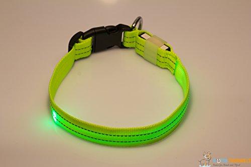 LED Leuchthalsband Basic 3 per USB aufladbar, Grün, Größe M - 2
