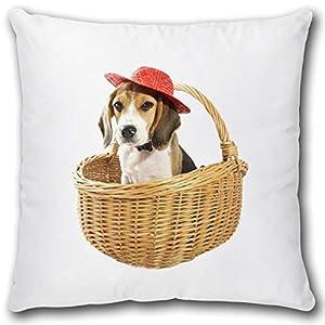 Geschenk Kissen mit Hund im Korb Dekokissen Hundemotiv Geschenk für Frauen Freundin Hundeliebhaber Motiv Zierkissen inkl…