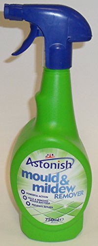 2-x-astonish-mould-mildew-remover-750ml