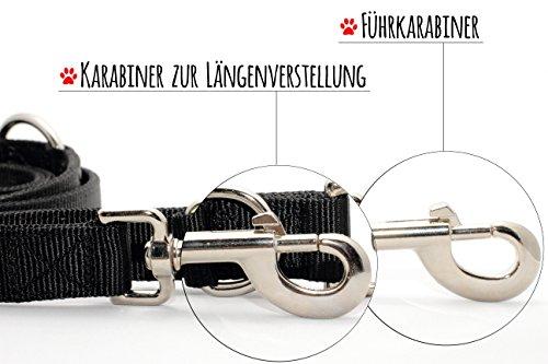 Hundeleine PetElements   inklusive Gratis Leckerlibeutel   Profi Doppelleine & Umhängeleine (2,5 cm breit)   längenverstellbare Hundeführleine & Übungsleine (1m – 2m)   Perfekt für Hundetraining   beißfestes Nylon - 3