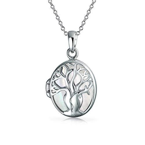 Family Tree Of Life Celtic Medaillon Anhänger Weiß Rainbow Perlmutt Muschel Oval Halskette Für Damen Silber