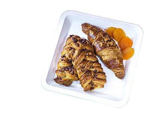 Harvest Pack Weiße Moderne Bagasse Eco Platten natürlichen Zuckerrohr Fasern 9,5