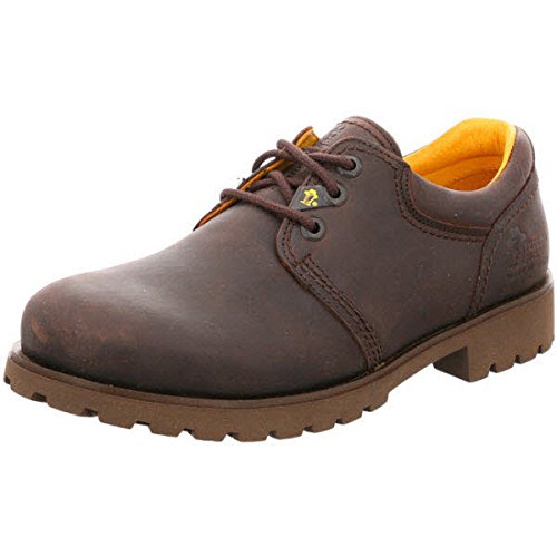 Panama Jack Basico 03, Chaussures basses homme 30 Marrone (D'Braun)