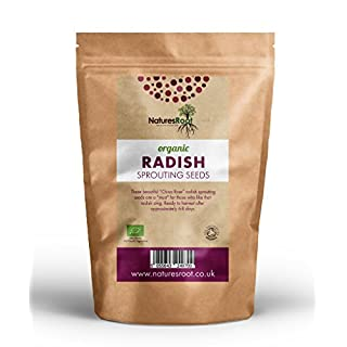 Natures Root Bio Rettichkeimen (China Rose) - Superfood | Nicht GVO | MIKROGRÜN | Sprouts | Rettich Keimsprossen (250g)