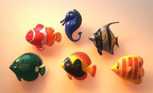 1 Poisson de 5 poissons 1 hippocampe