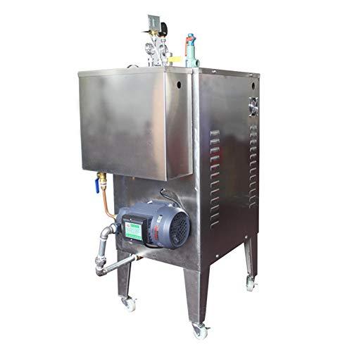 IIWOJ Generador De Vapor Eléctrico 6000W Limpiador