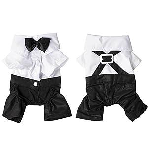Hundebekleidung Kleidung Suit S M L XL Schwarz Weiss