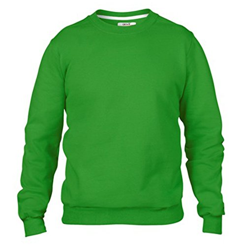 Anvil Herren Modern Sweatshirt Gr. XX-Large, apfelgrün (Blue Crewneck Distressed)