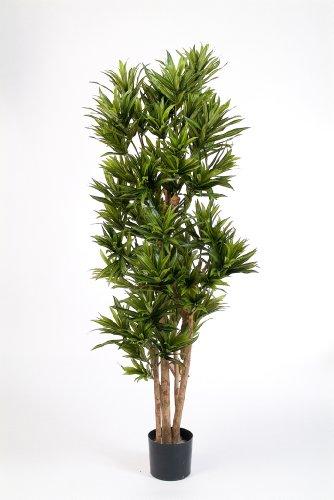 artplants – Deko Dracaena Reflexa Pflanze YASU, grün, 150 cm – Kunst Zimmerbaum/Künstlicher Drachenbaum
