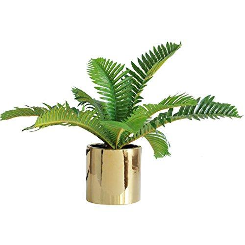 Gold-topf (Metal-Home Sukkulente Töpfe - Gold Keramik Runde Blume Container für Mini Sukkulenten, Kaktus, kleine Blumentöpfe (groß))