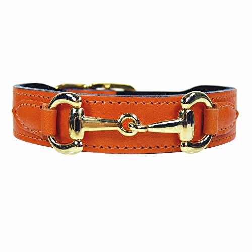 hartman-and-rose-gucci-collier-pour-chien